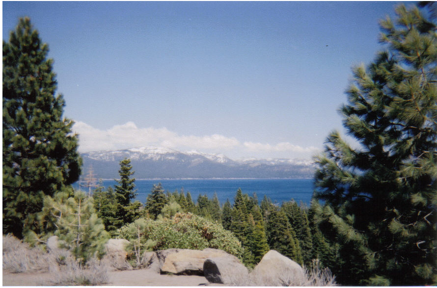 Go to the Lake Tahoe Visitors Bureau